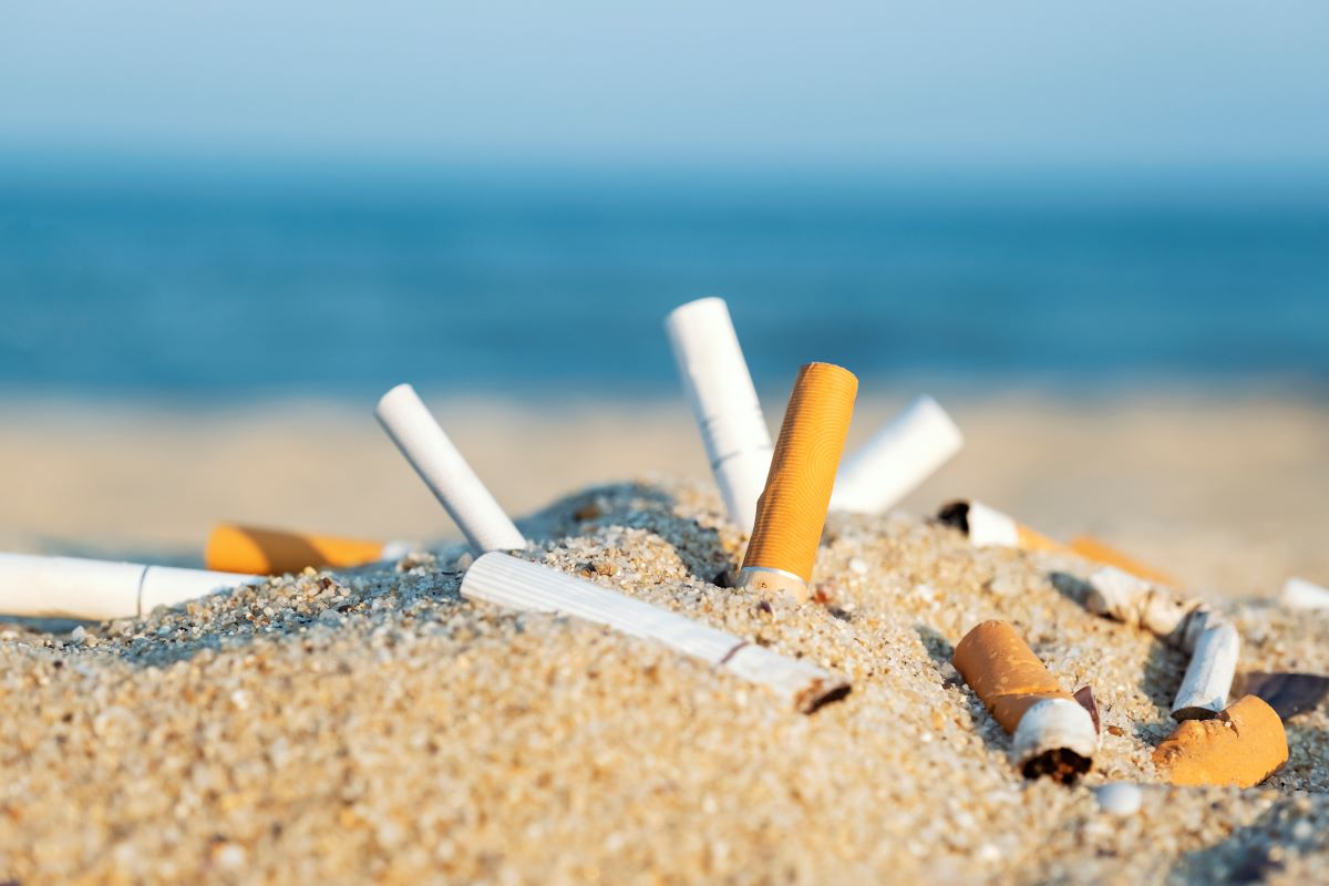 A cigarette butt is the most common piece of rubbish in the world